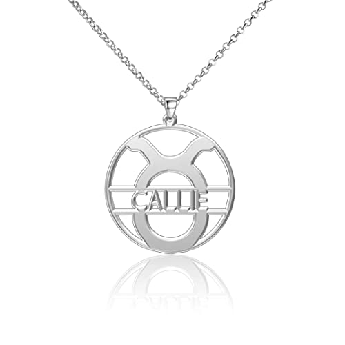 LoEnMe Jewelry Silver Plated Cancer Personalized 925 Engraved Custom Women James Alert Chart Script Necklace