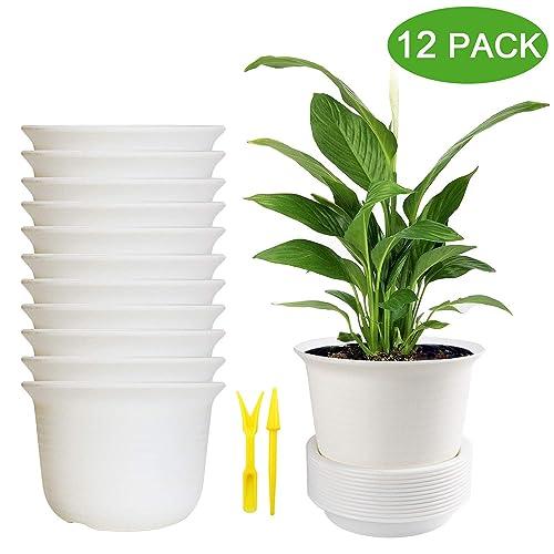 CLEAR PLASTIC ORCHID PLANT POTS TEKU ORCHID FLOWER POT 12CM DIAMETER