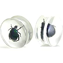 Double Flare Beetle Inlay Bug Plugs Pair of 1 /& 3//16 Inch 30mm